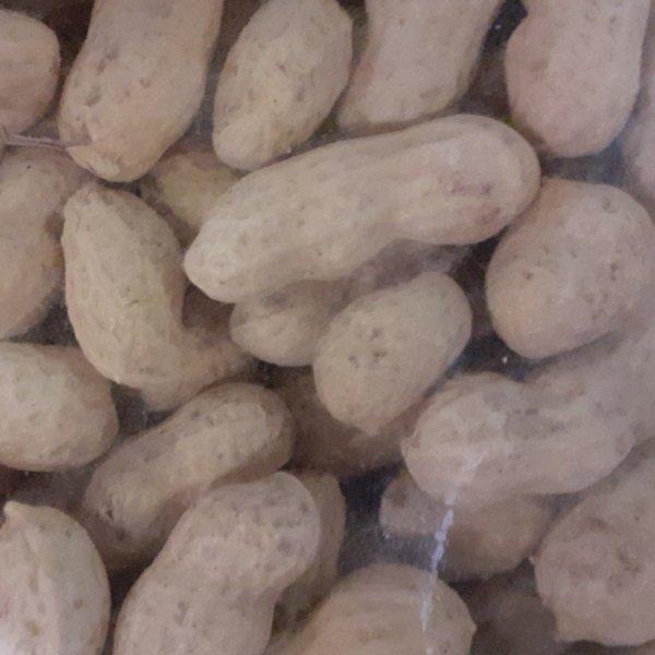 Erdnüsse in Schale